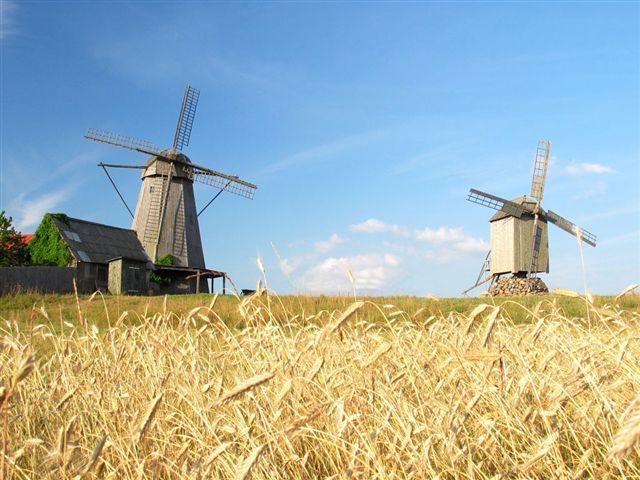 Radtour entlang der Westküste und Estnischen Inseln - individuell, 12 Tage, von/bis Tallinn