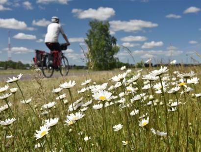 Top! Kurische Nehrung & Memelland per Rad 2021 - individuell mit Gepäck-transport (8 Tage, von/bis Klaipėda)